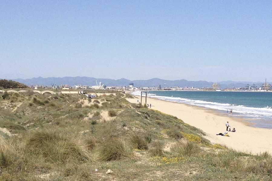 Playas de Valencia ciudad: El Saler y otras del Parque Natural de l'Albufera.