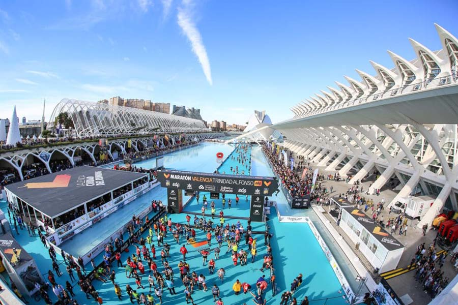 Living in sunny, vibrant Valencia is a great choice., easier with Travel Habitat. A sports city!